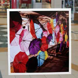 Transparent Acrylic Canvas with Sticker Printing Umbrellas