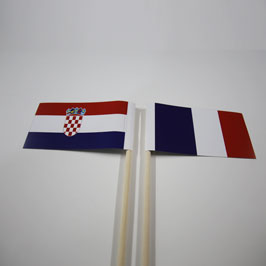 Custom Outdoor Hand Flags